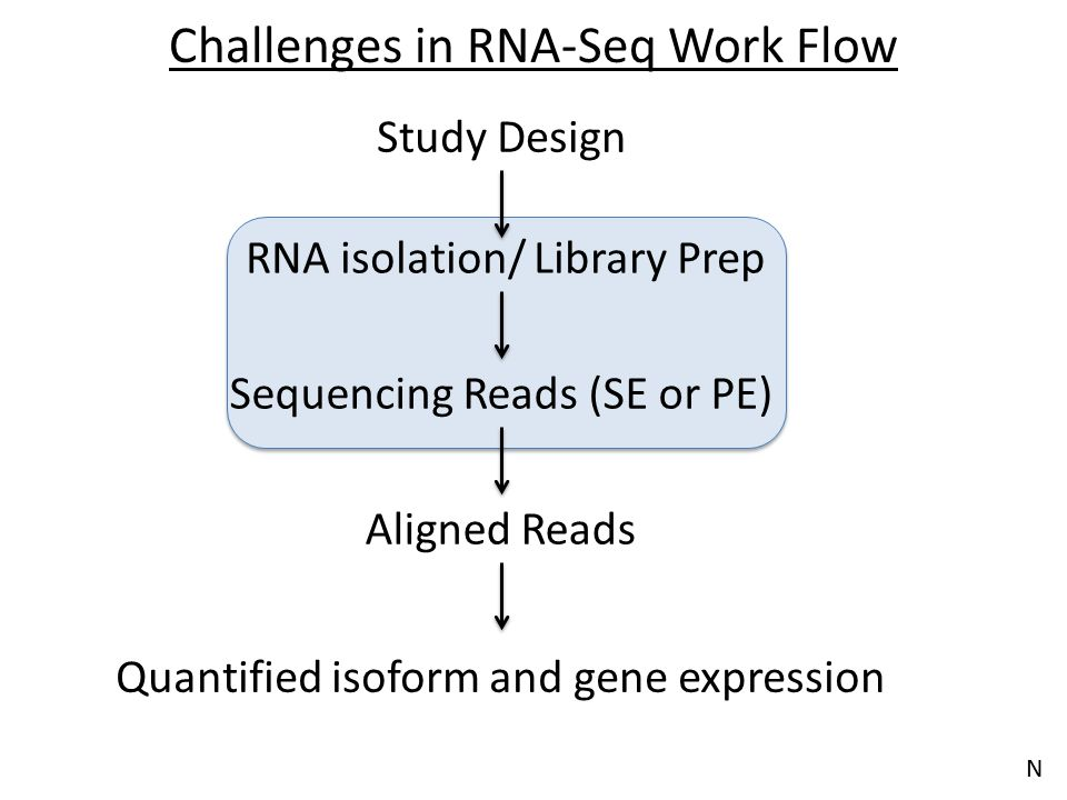 Challenges in RNA-Seq Work Flow