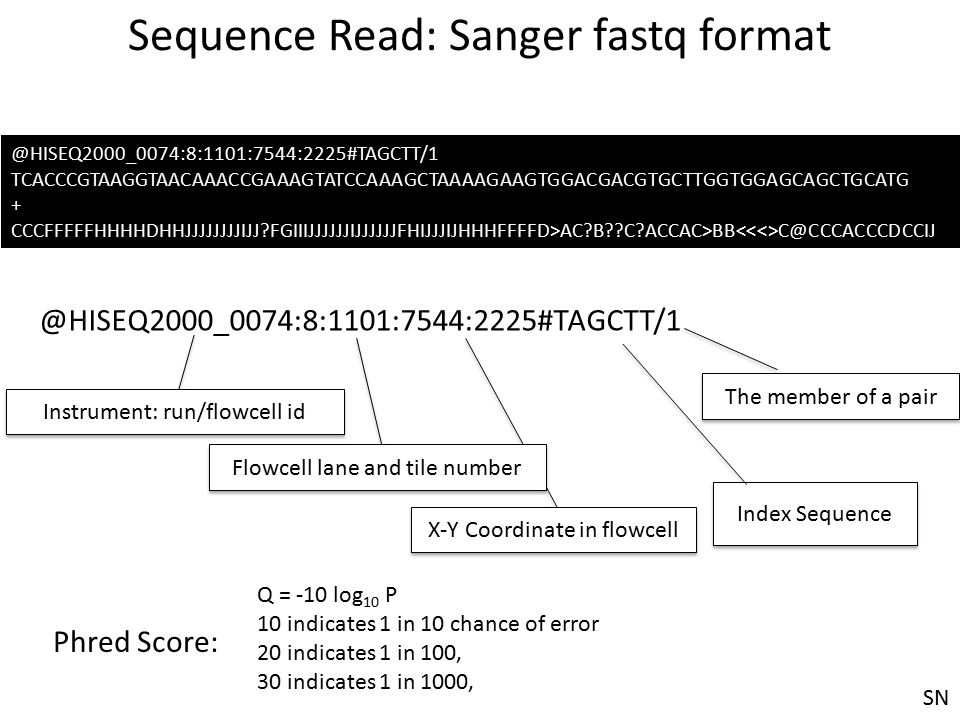 Sequence Read: Sanger fastq format