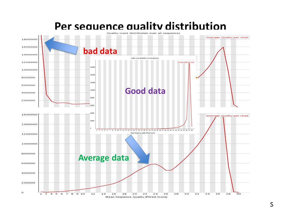 Per sequence quality distribution
