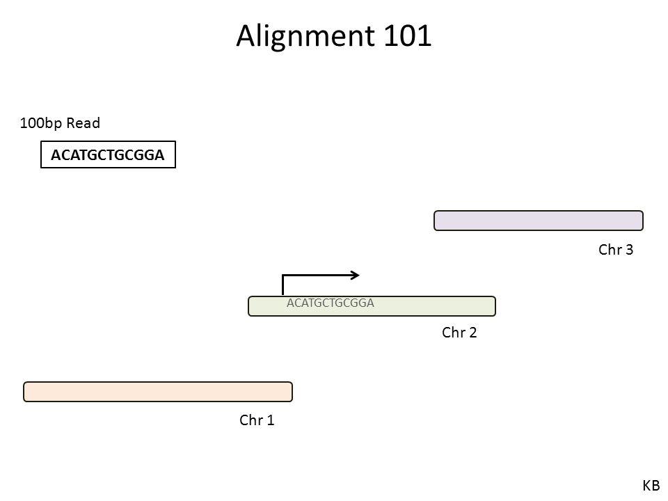 Alignment 101 100bp Read ACATGCTGCGGA Chr 3 ACATGCTGCGGA Chr 2 Chr 1