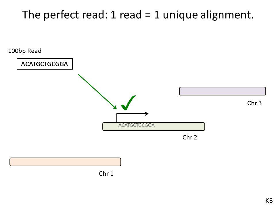 The perfect read: 1 read = 1 unique alignment.