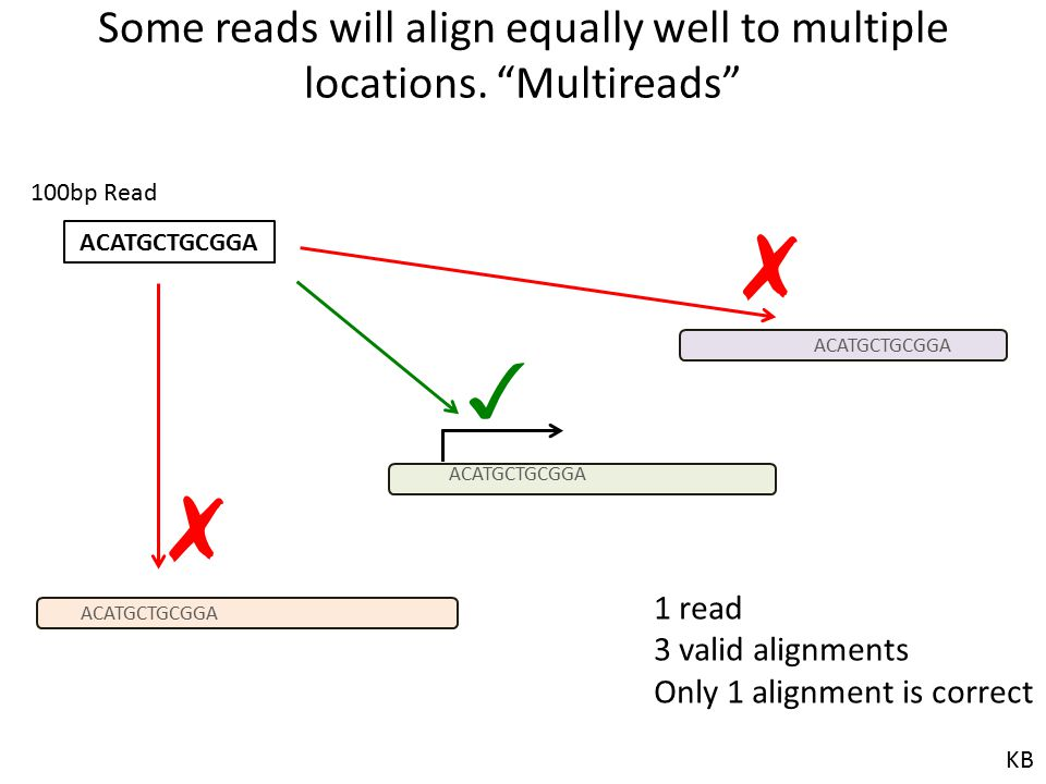 Some reads will align equally well to multiple locations. Multireads