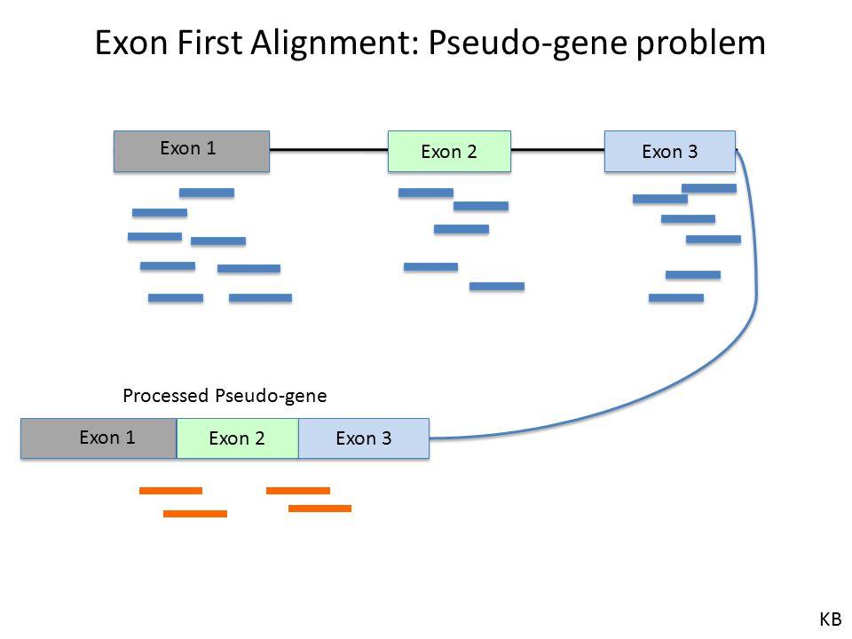 Exon First Alignment: Pseudo-gene problem