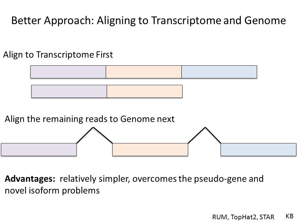 Better Approach: Aligning to Transcriptome and Genome