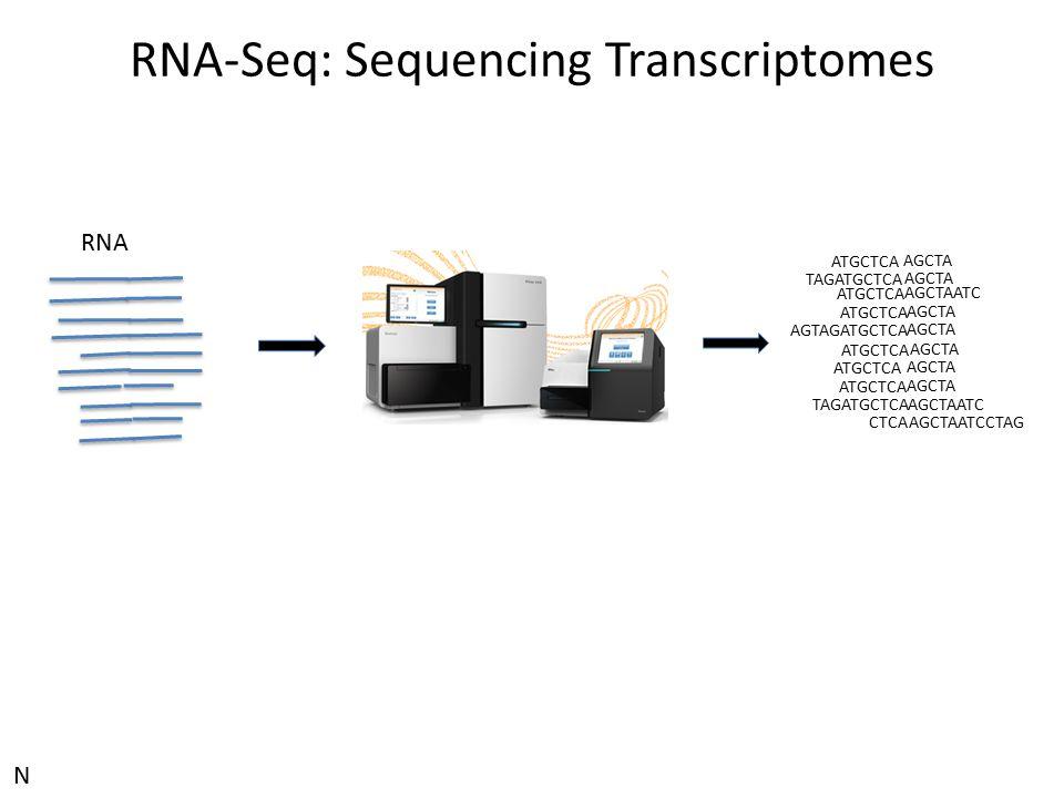 RNA-Seq: Sequencing Transcriptomes