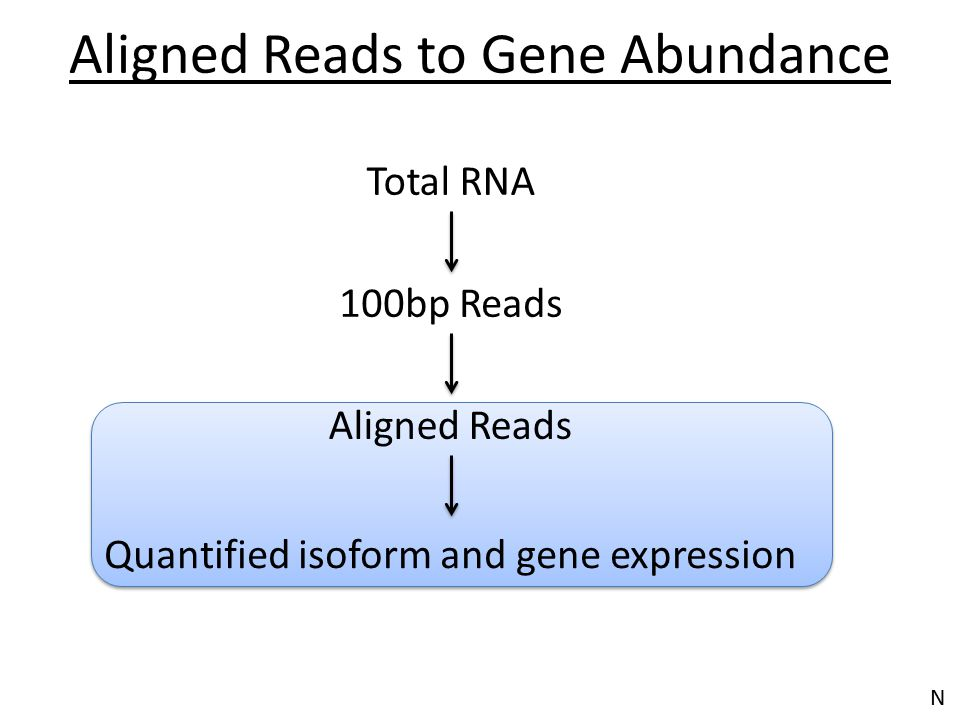 Aligned Reads to Gene Abundance