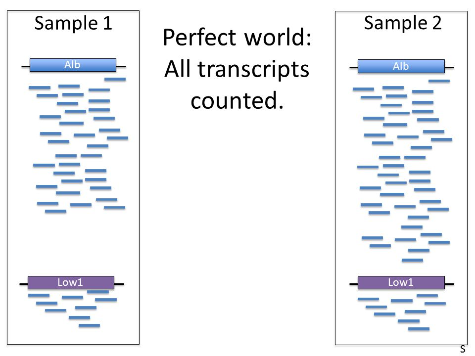 Perfect world: All transcripts counted.