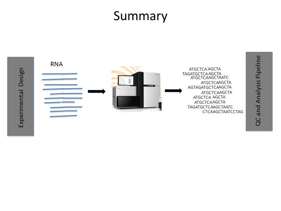 Summary RNA QC and Analysis Pipeline Experimental Design ATGCTCA AGCTA