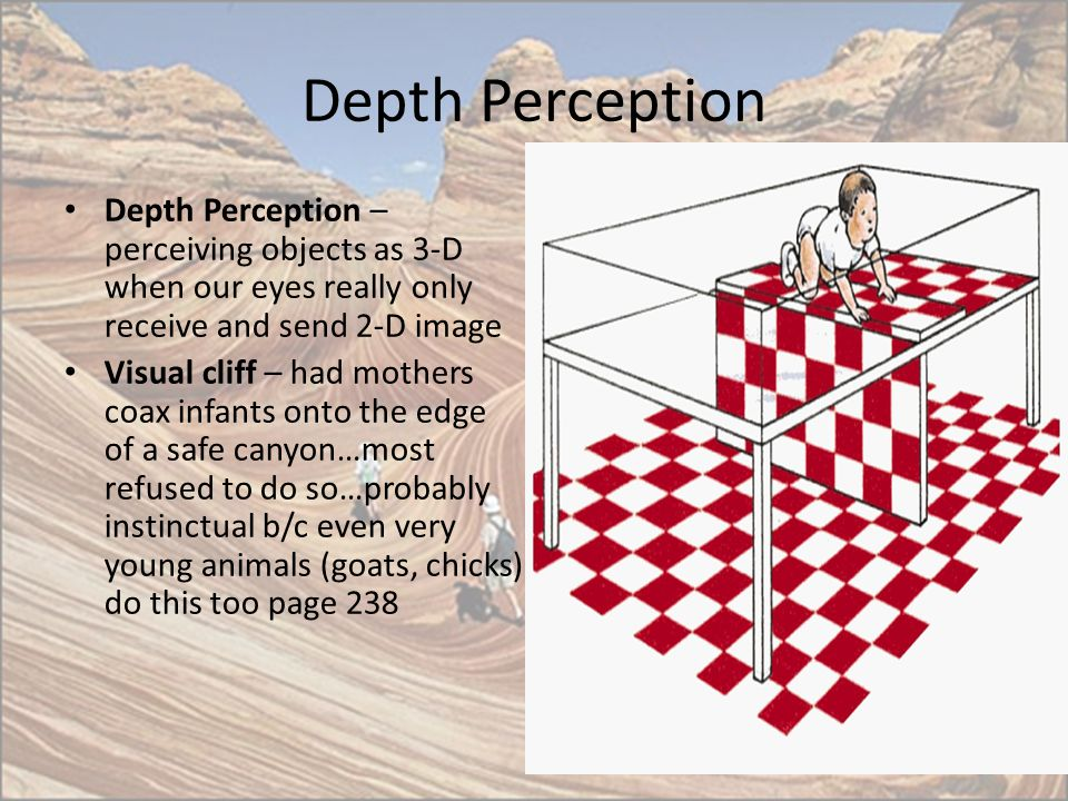 Depth Perception Depth Perception – perceiving objects as 3-D when our eyes really only receive and send 2-D image.
