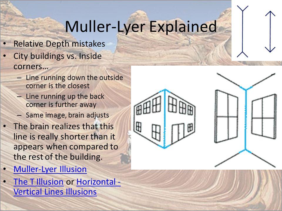 Muller-Lyer Explained