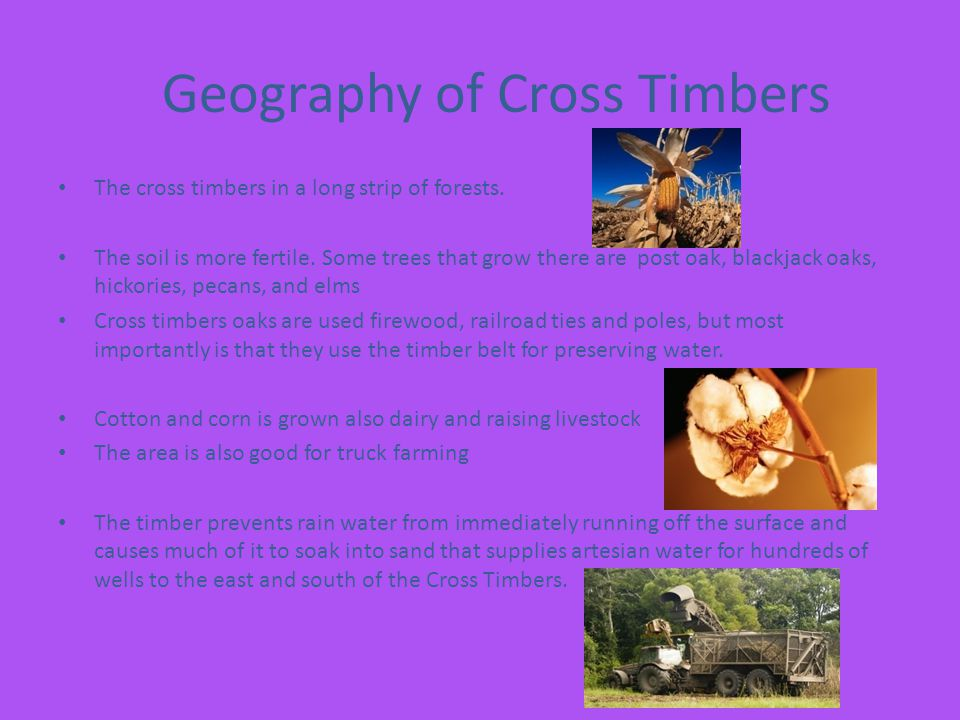 Geography of Cross Timbers
