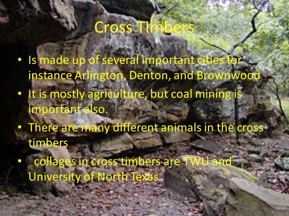 Cross Timbers Is made up of several important cities for instance Arlington, Denton, and Brownwood.