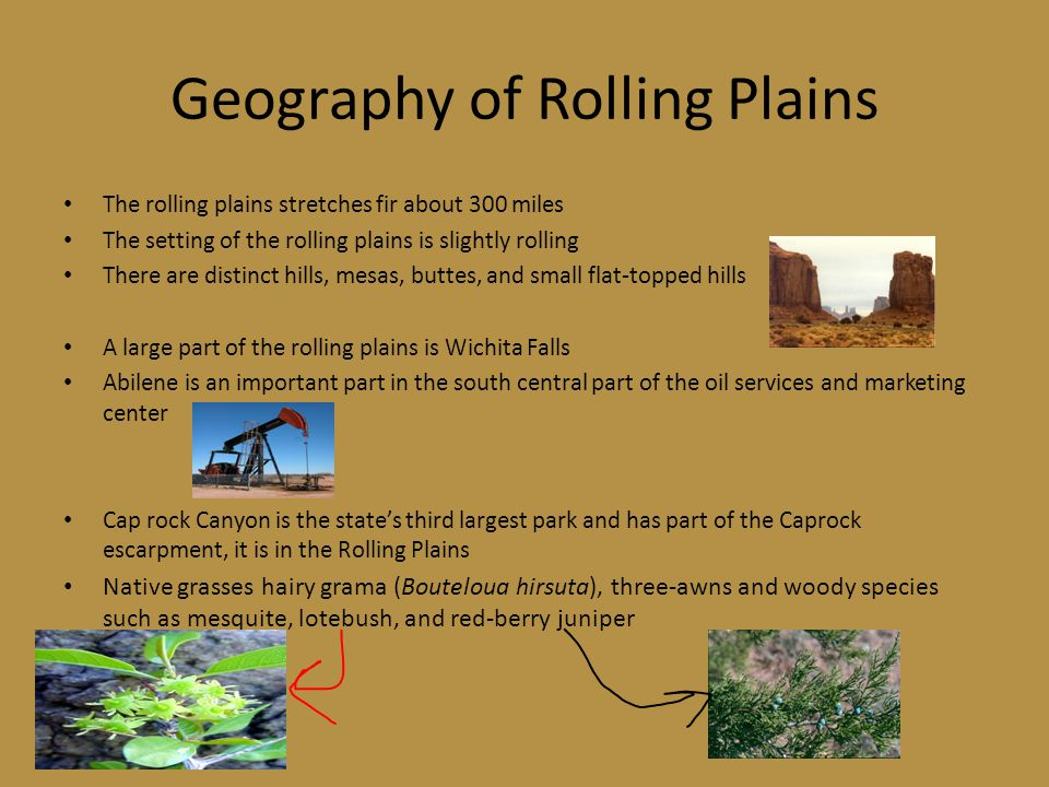 Geography of Rolling Plains