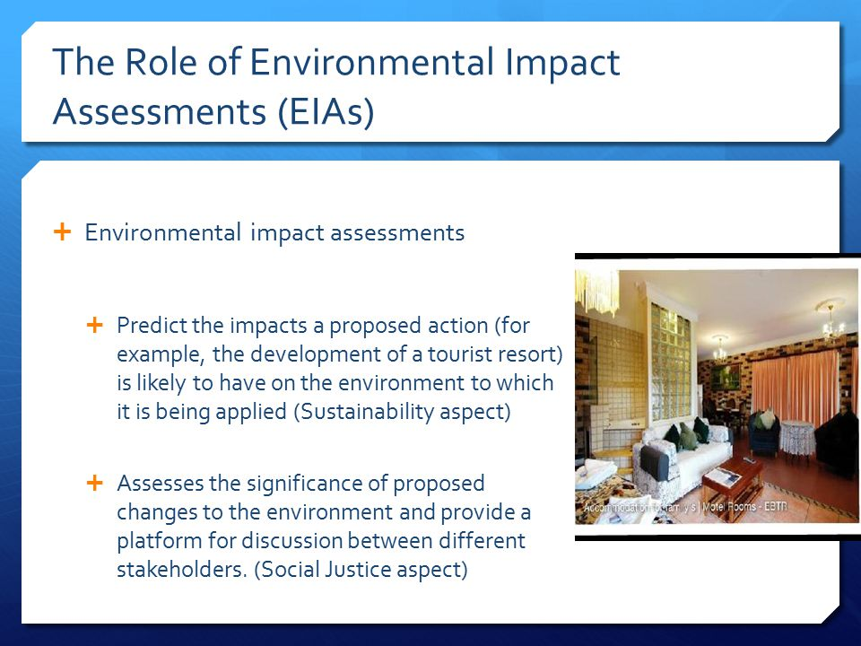 The Role of Environmental Impact Assessments (EIAs)
