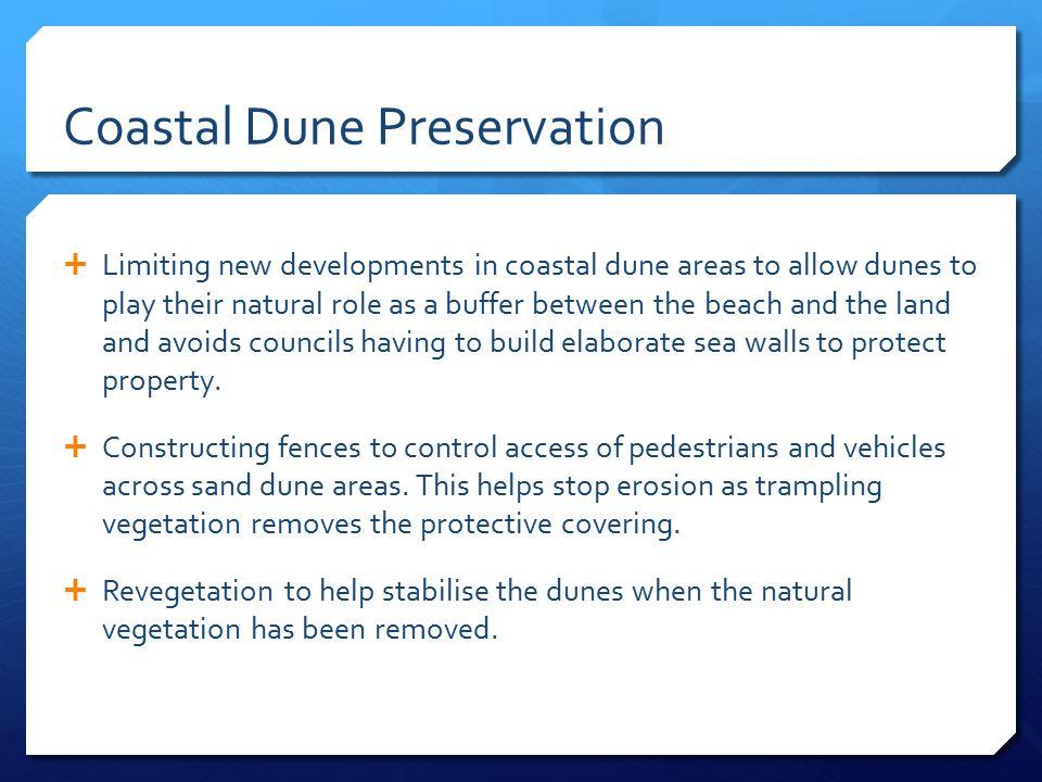 Coastal Dune Preservation