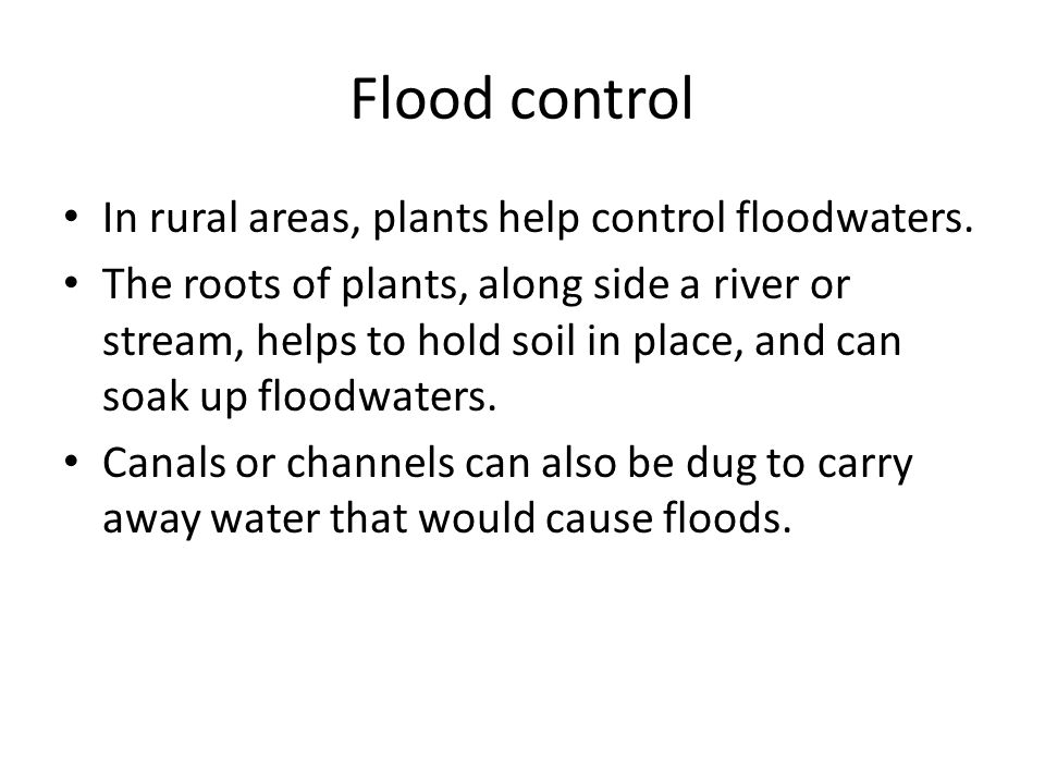 Flood control In rural areas, plants help control floodwaters.