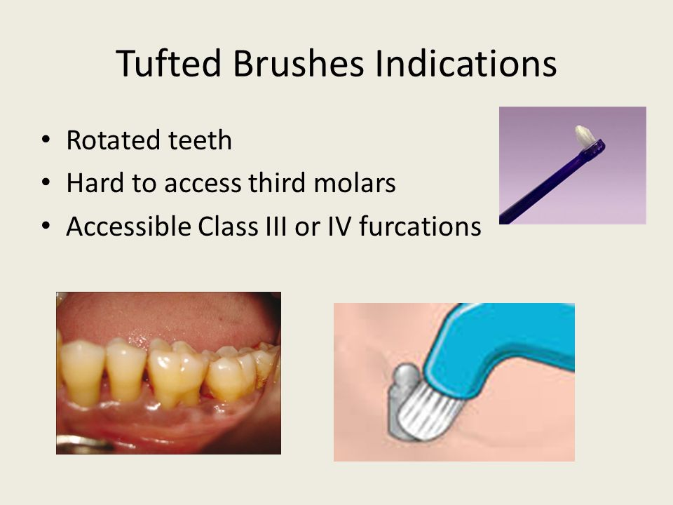 Tufted Brushes Indications