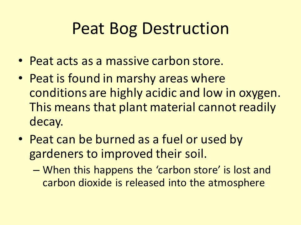 Peat Bog Destruction Peat acts as a massive carbon store.