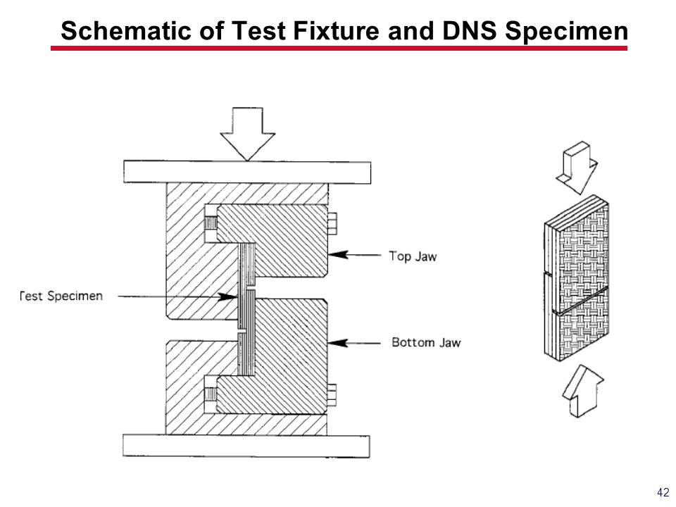 Schematic of Test Fixture and DNS Specimen