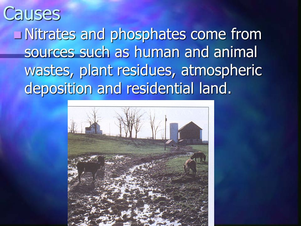 Causes Nitrates and phosphates come from sources such as human and animal wastes, plant residues, atmospheric deposition and residential land.