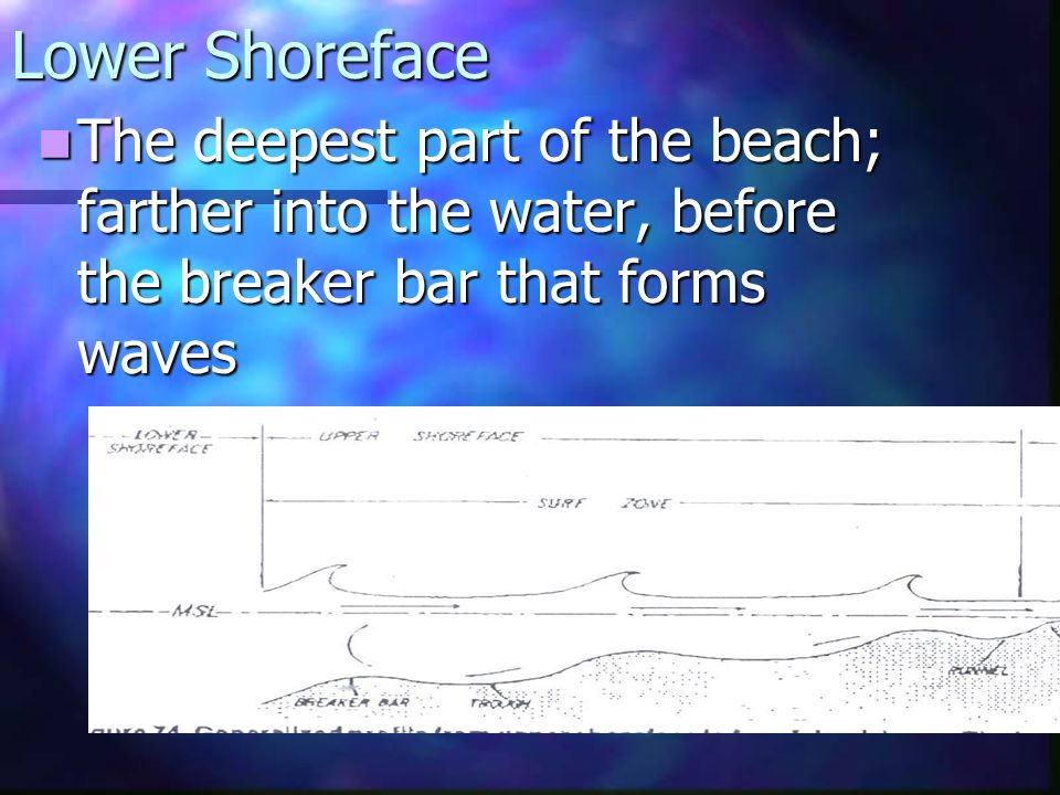 Lower Shoreface The deepest part of the beach; farther into the water, before the breaker bar that forms waves.