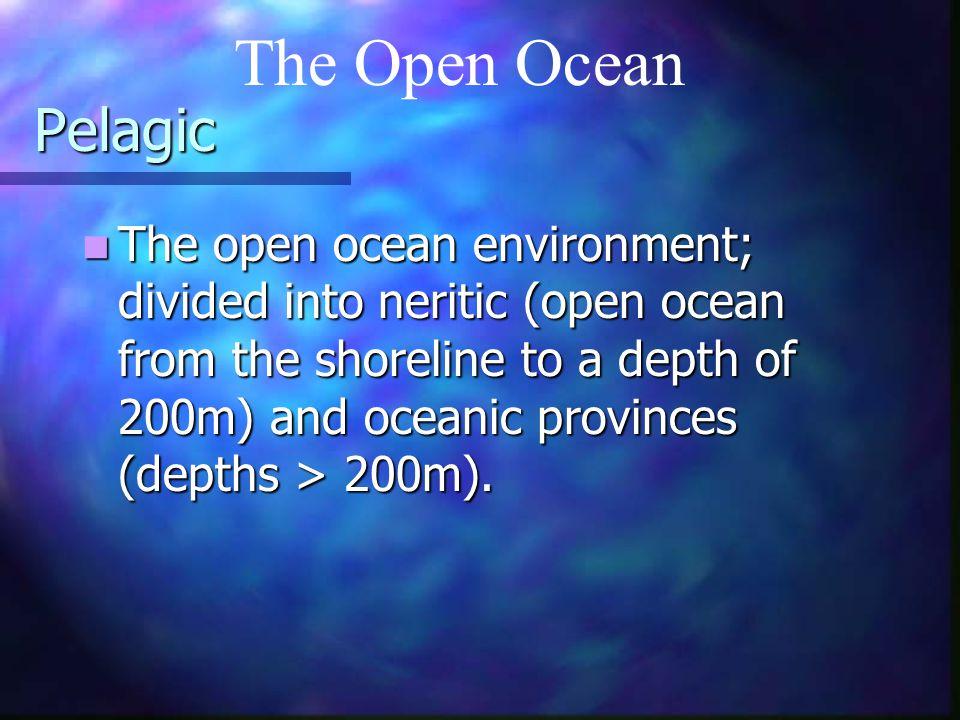 The Open Ocean Pelagic.