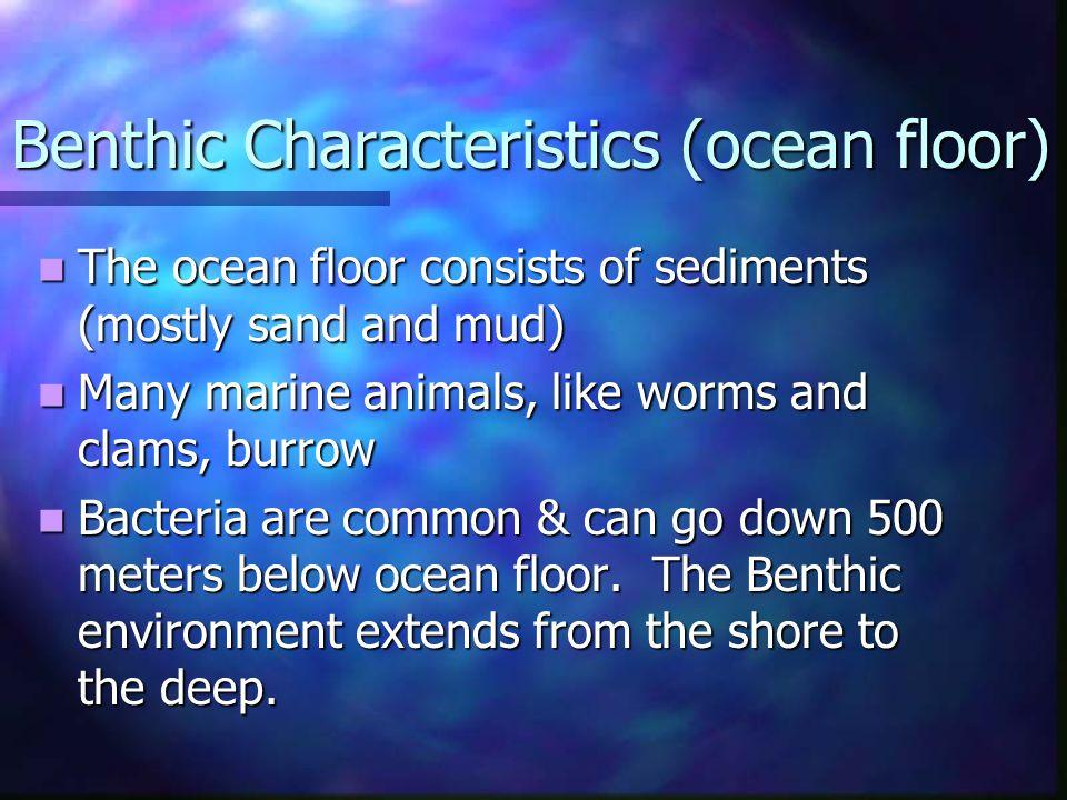 Benthic Characteristics (ocean floor)