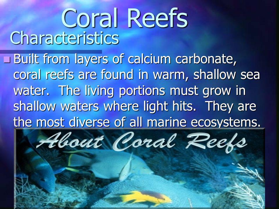 Coral Reefs Characteristics