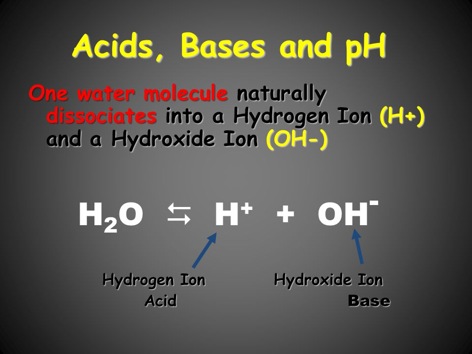 Acids, Bases and pH H2O  H+ + OH-