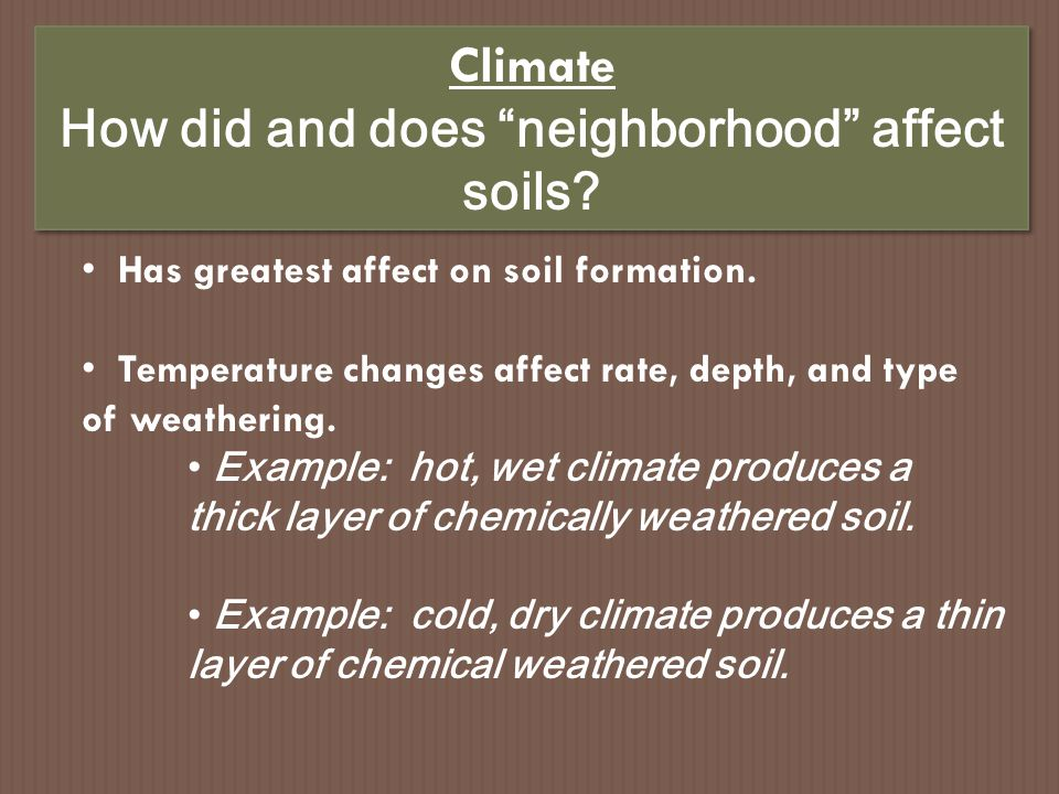 How did and does neighborhood affect soils