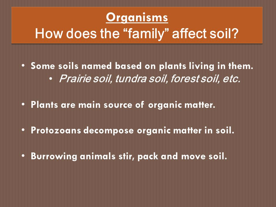How does the family affect soil