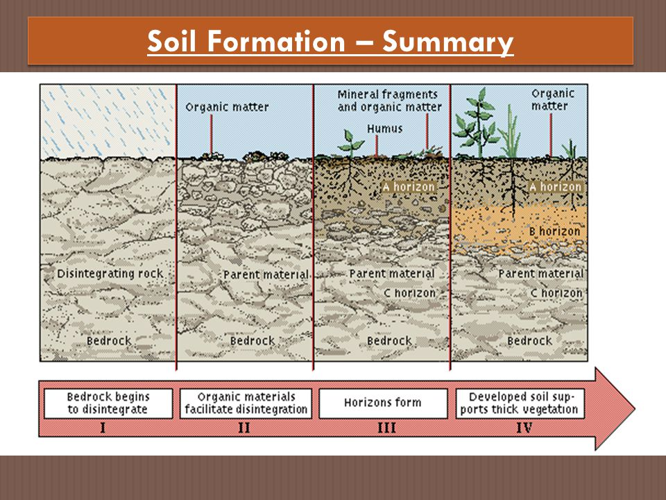 Soil Formation – Summary