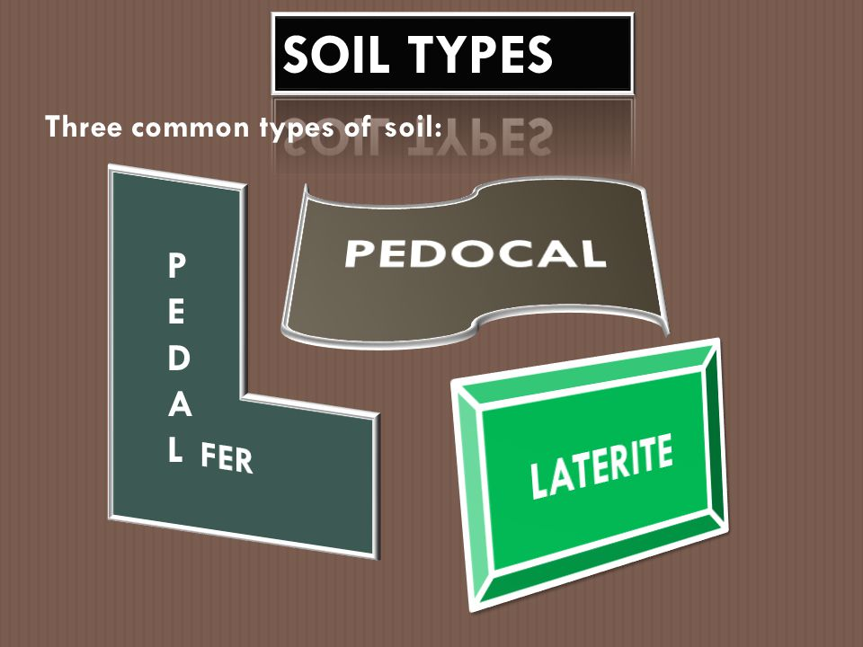 SOIL TYPES Three common types of soil: PEDOCAL PEDAL FER LATERITE