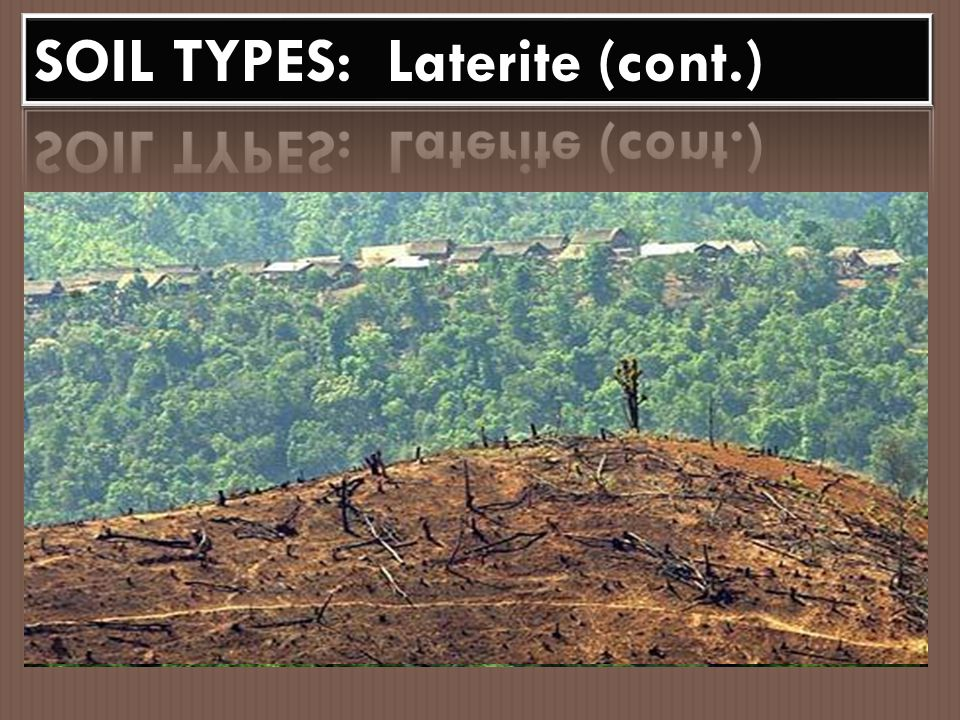 SOIL TYPES: Laterite (cont.)
