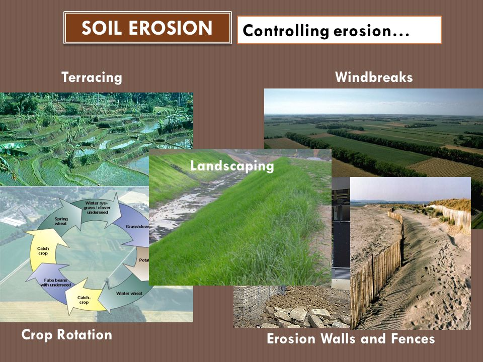 SOIL EROSION Controlling erosion… Terracing Windbreaks Landscaping