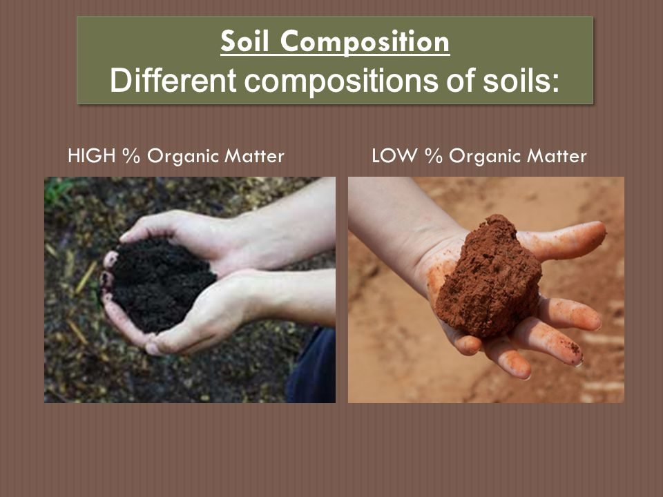 Different compositions of soils: