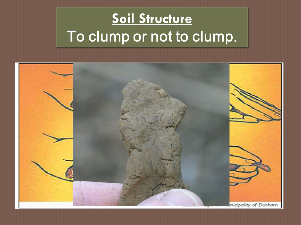 Soil Structure To clump or not to clump.