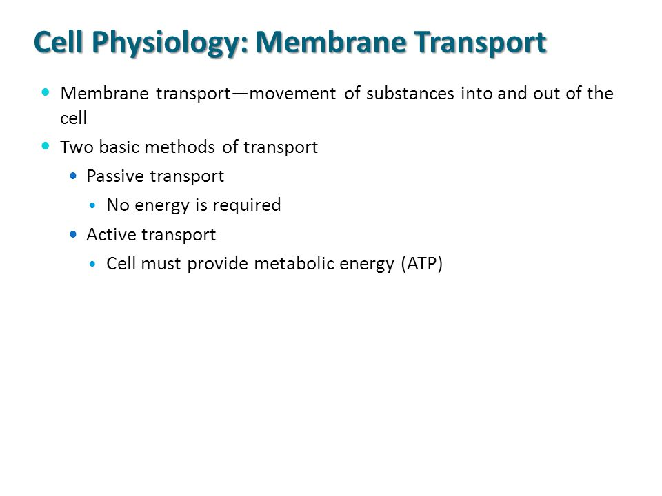Cell Physiology: Membrane Transport