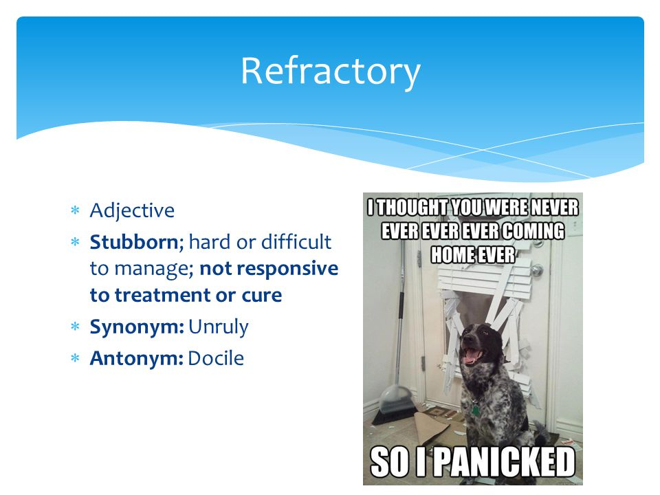 Refractory Adjective. Stubborn; hard or difficult to manage; not responsive to treatment or cure. Synonym: Unruly.