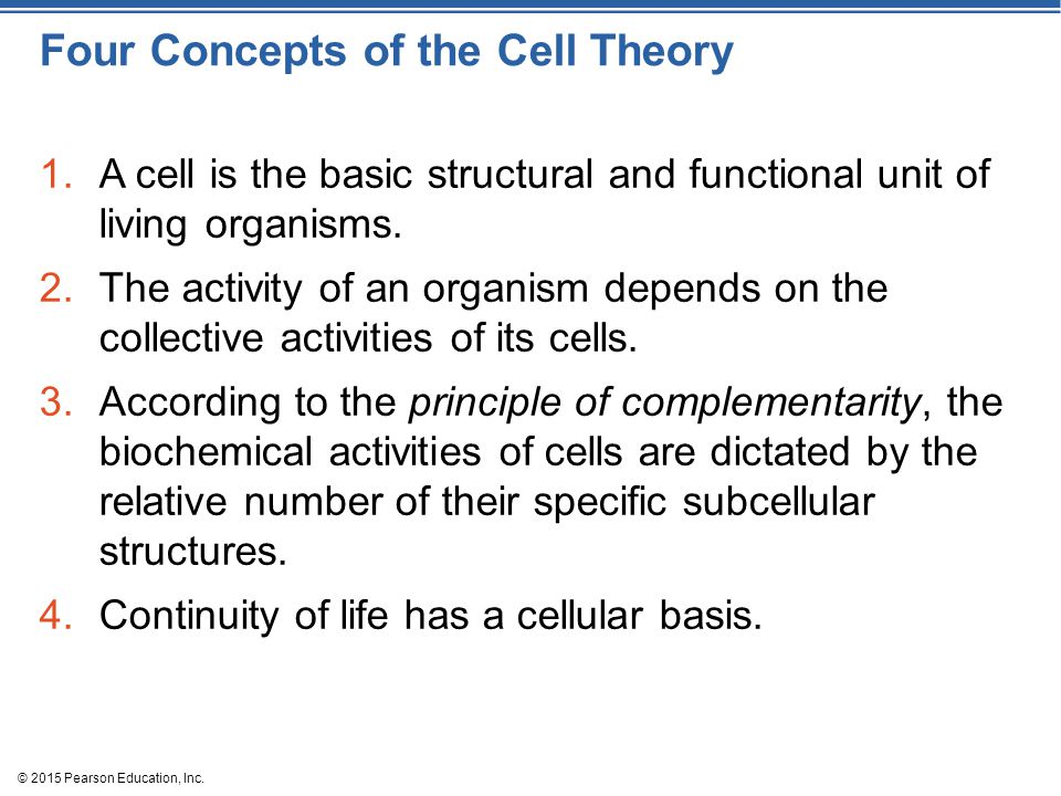 Four Concepts of the Cell Theory