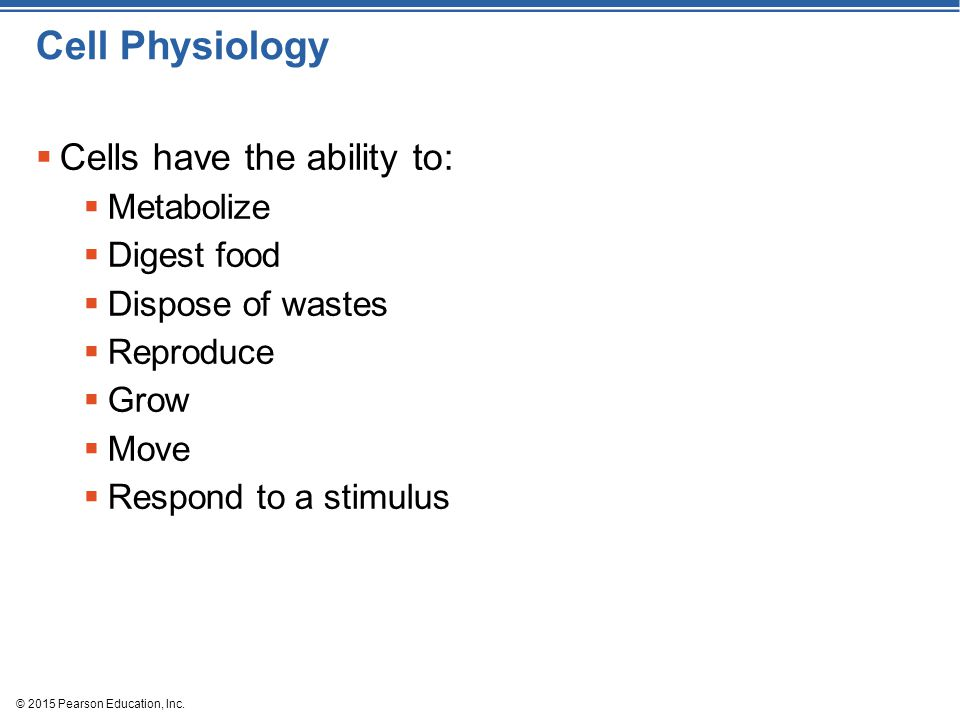 Cell Physiology Cells have the ability to: Metabolize Digest food