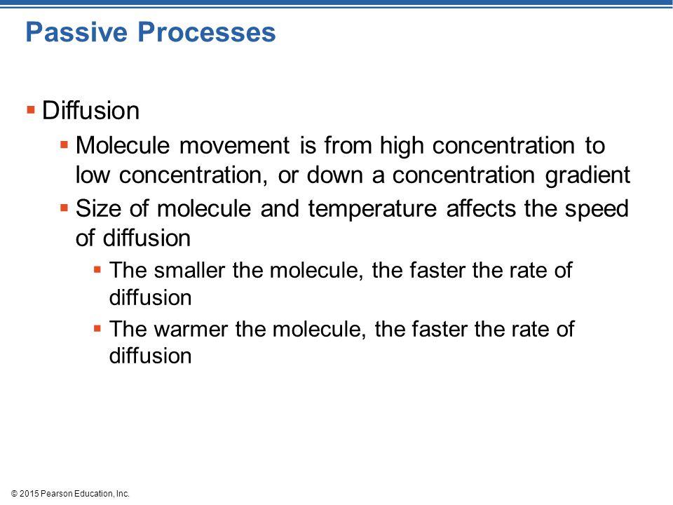 Passive Processes Diffusion