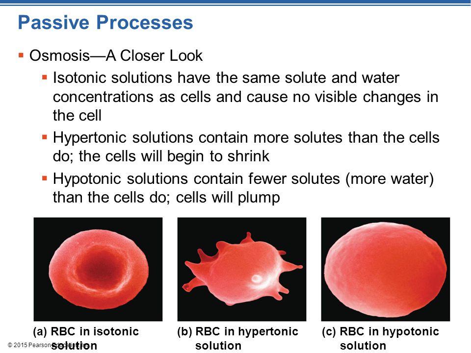 Passive Processes Osmosis—A Closer Look