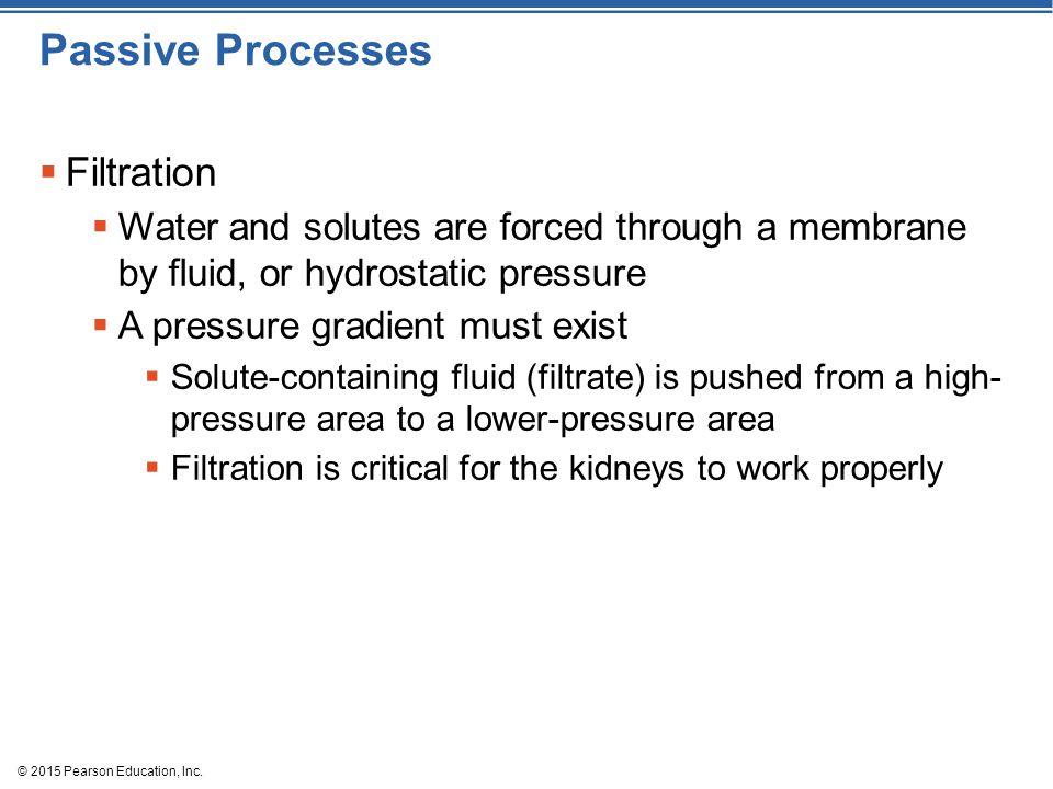 Passive Processes Filtration