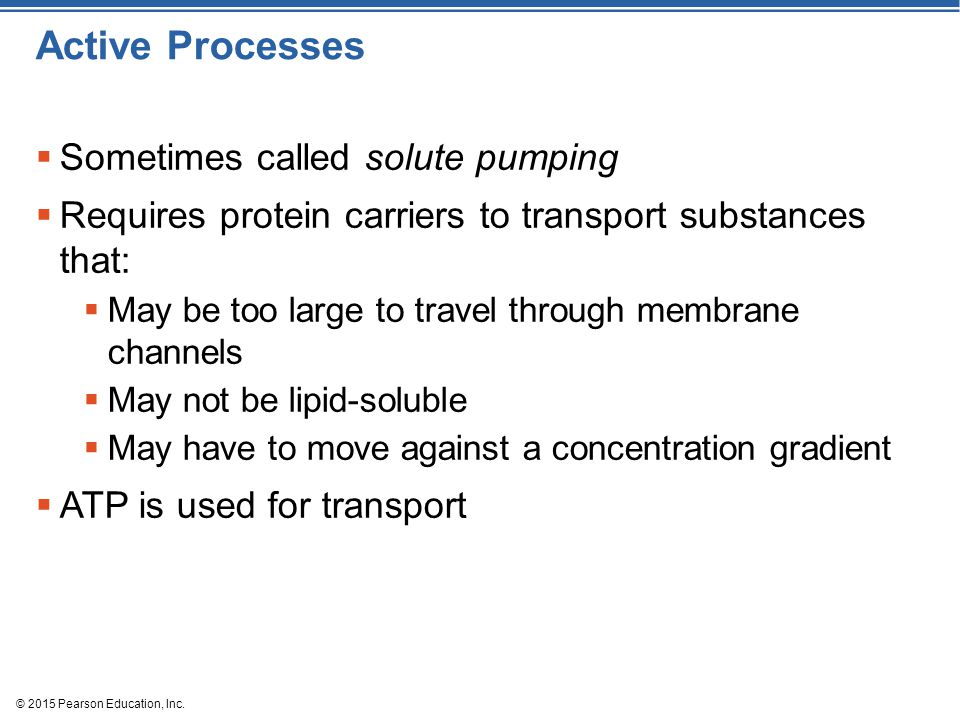 Active Processes Sometimes called solute pumping