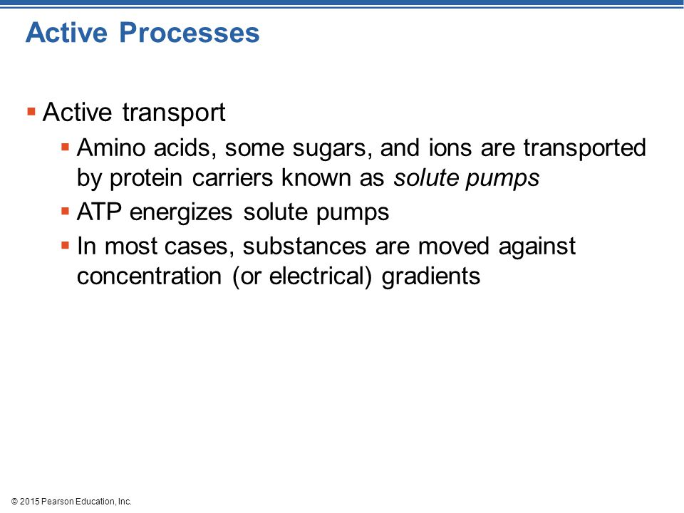 Active Processes Active transport
