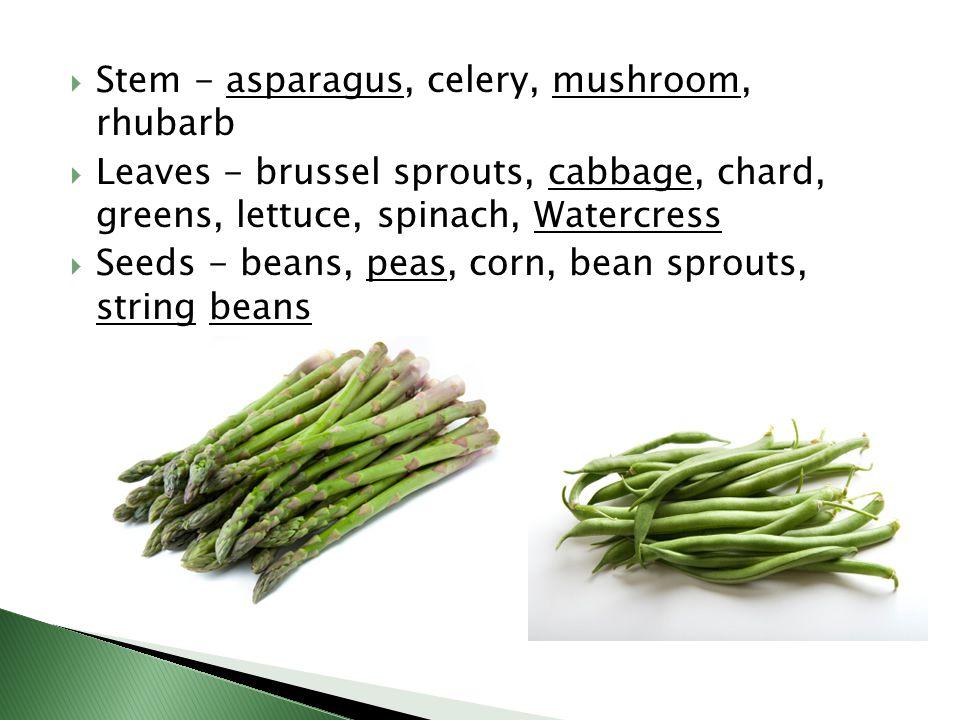 Stem - asparagus, celery, mushroom, rhubarb
