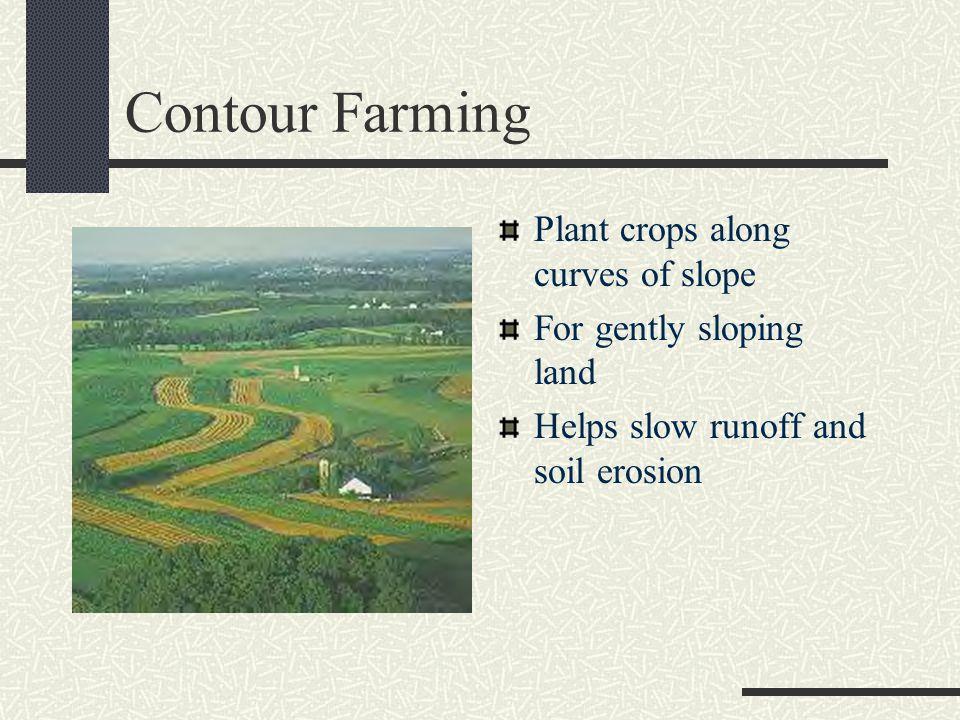 Contour Farming Plant crops along curves of slope