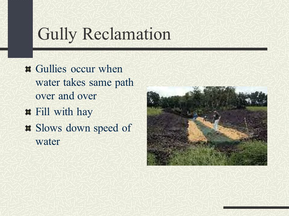 Gully Reclamation Gullies occur when water takes same path over and over.