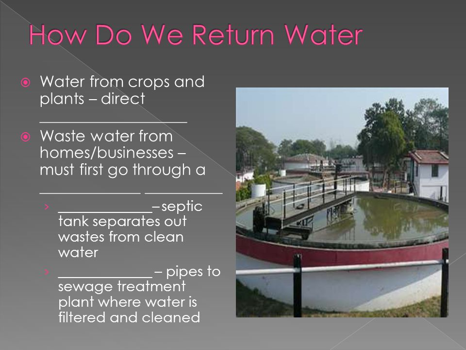 How Do We Return Water Water from crops and plants – direct ___________________.